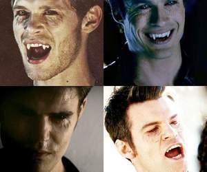 the vampire diaries and vampires image