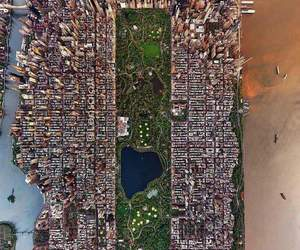 new york, usa, and Central Park image