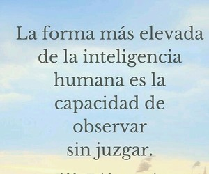 frases and juzgar image