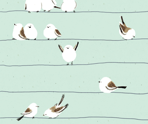 bird, white, and cute image