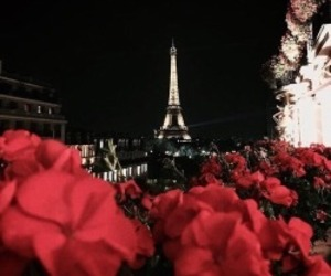 paris, flowers, and night image