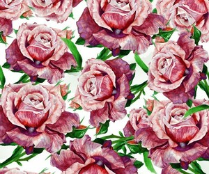 flowers, pattern, and rose image
