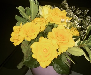 flowers, yellow, and love image