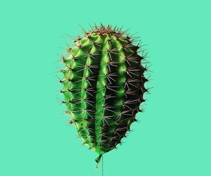 cactus, balloon, and art image