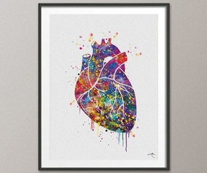 anatomia, anatomy, and heart image