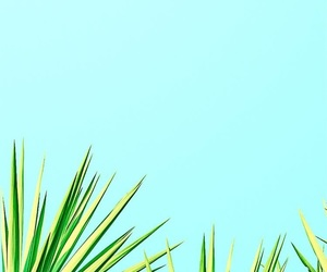 wallpaper, blue, and green image