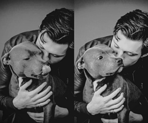 black and white, dog, and kiss image