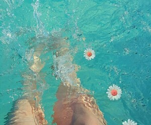 blue, legs, and flower image