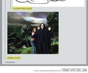 harry potter, funny, and puppies image