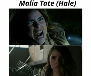 pack, tate, and hale image