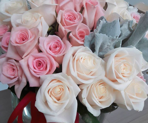 beautiful, rosas, and much image