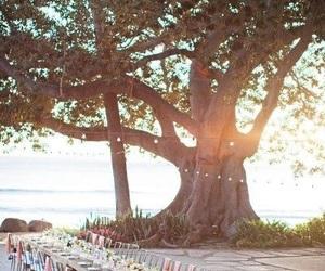 wedding, beach, and dinner image