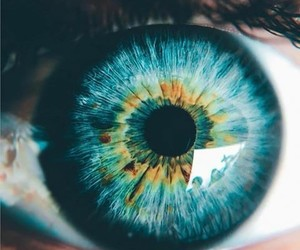 beautiful eyes, blue eyes, and colors image