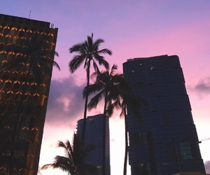 building, palm trees, and pink image