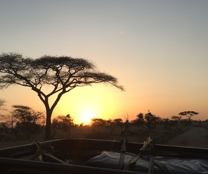 africa, beautiful, and nature image