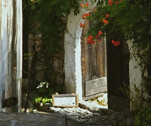 Bosnia, blagaj, and flowers image