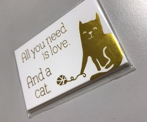 cat, life, and magnet image