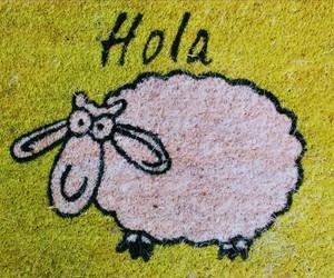 hola, felpudo, and oveja image