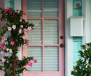 pink, door, and flowers image