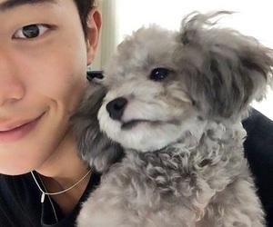 nam joo hyuk, korean, and actor image