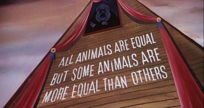 animal, book, and equal image