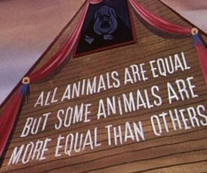 animal, book, and equal image