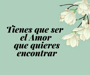 amor, frases, and ❤ image