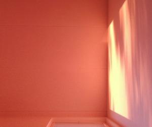 peach and peachy image