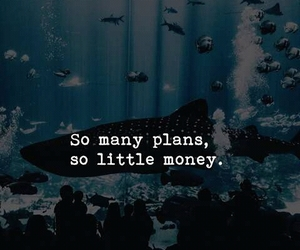 money, plans, and text image