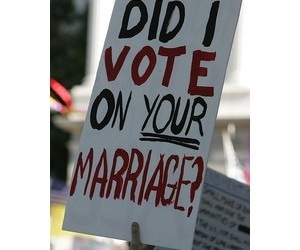 gay marriage and lgbt image