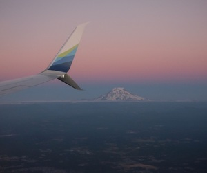 fly, summer, and sunset image