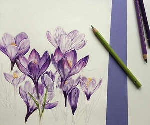 flowers, pencil, and violet image