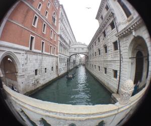 fish eye and venezia image