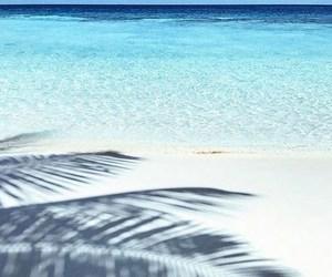 beach, fashion, and sea image