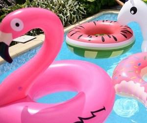 donut, flamingo, and pool image
