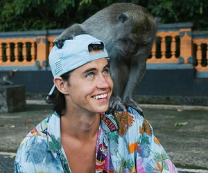 nash grier, animals, and beautiful image