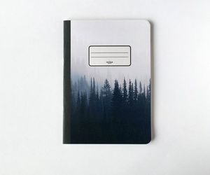 forest, vintage, and back to school image