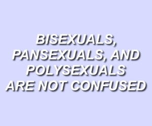 bisexual, lgbtq, and pansexual image