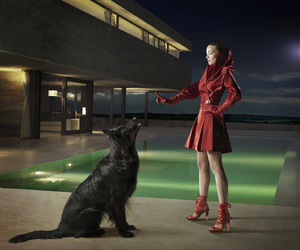 beauty, little red riding hood, and dog image