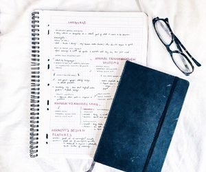 study, note, and studyblr image