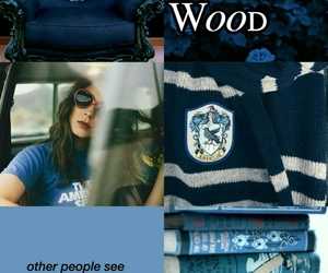 ravenclaw, jily, and remuslupin image