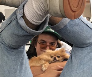 joe keery, stranger things, and dog image