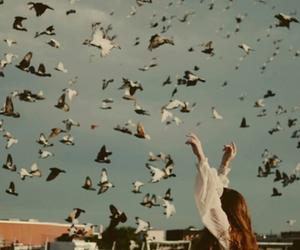 bird, girl, and free image