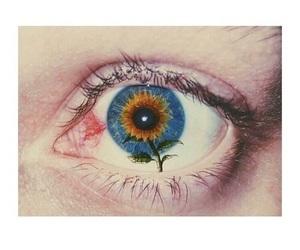 eye, sunflower, and blue image