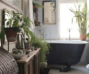 bathroom, plants, and home image