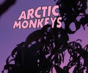 arctic monkeys, pink, and rad image
