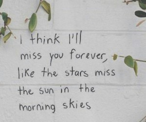 quotes, stars, and lana del rey image