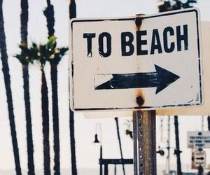 beach and vacation image