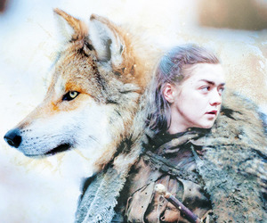 got, game of thrones, and nymeria image