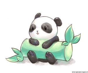panda, cute, and bamboo image